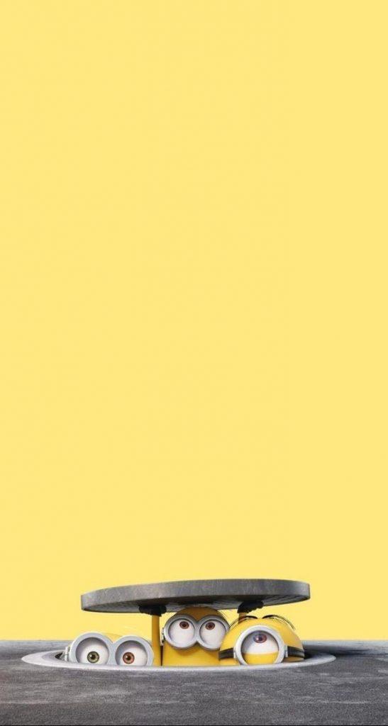 بک گراند زرد قانتزی