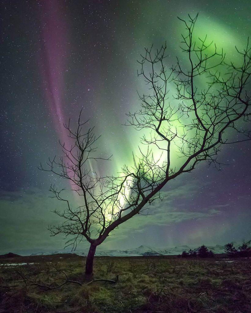شفق قطبی سبز