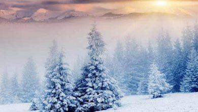 والپیپر و بک گراند زمستانی (زمستونی)