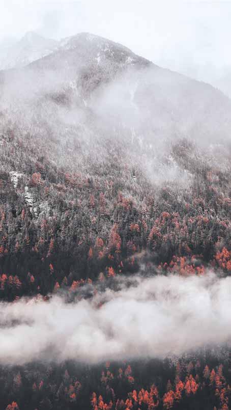 تصویر زمینه زمستانی