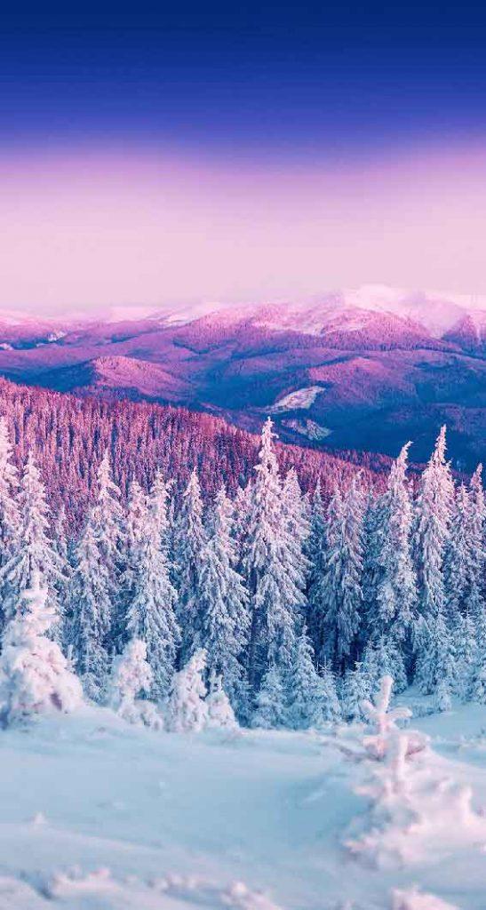تصویر زمینه و پس زمینه زمستان