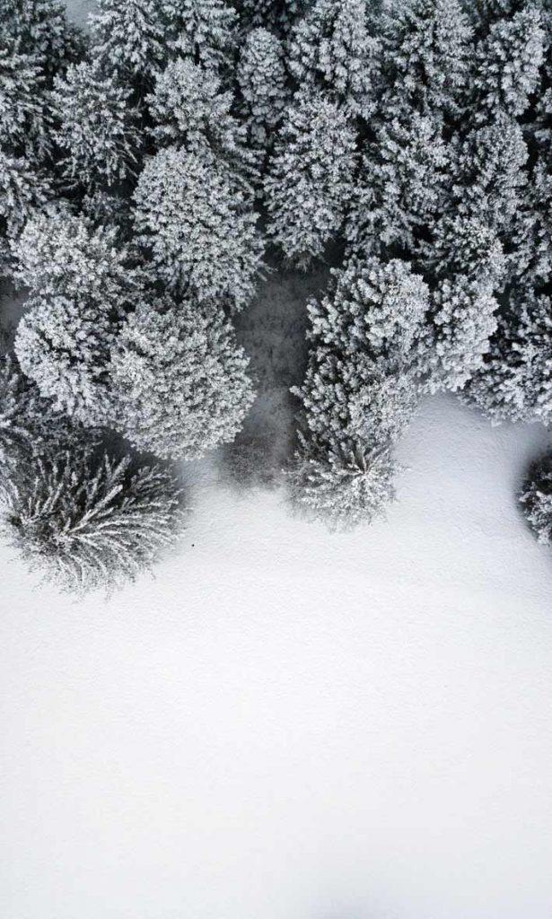 والپیپر و بک گراند زمستونی + تکست و متن زمستان