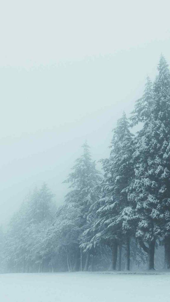 بک گراند و تصویر زمینه استوری زمستان