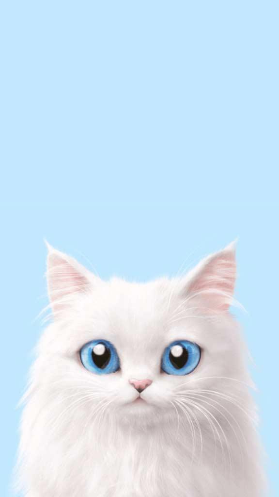 والپیپر گربه فانتزی