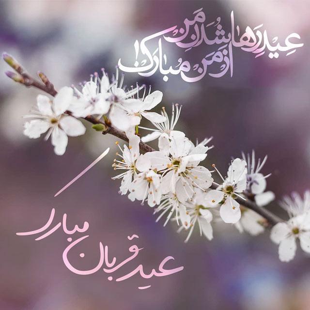 پیامک و اس ام اس تبریک عید قربان